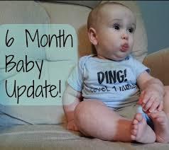 6 meses