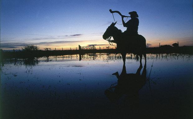 melhores-destinos-com-crianças-pantanal