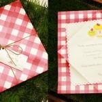 festa-infantil-tema-picnic 28