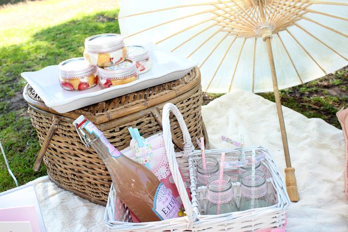festa-infantil-tema-picnic 38