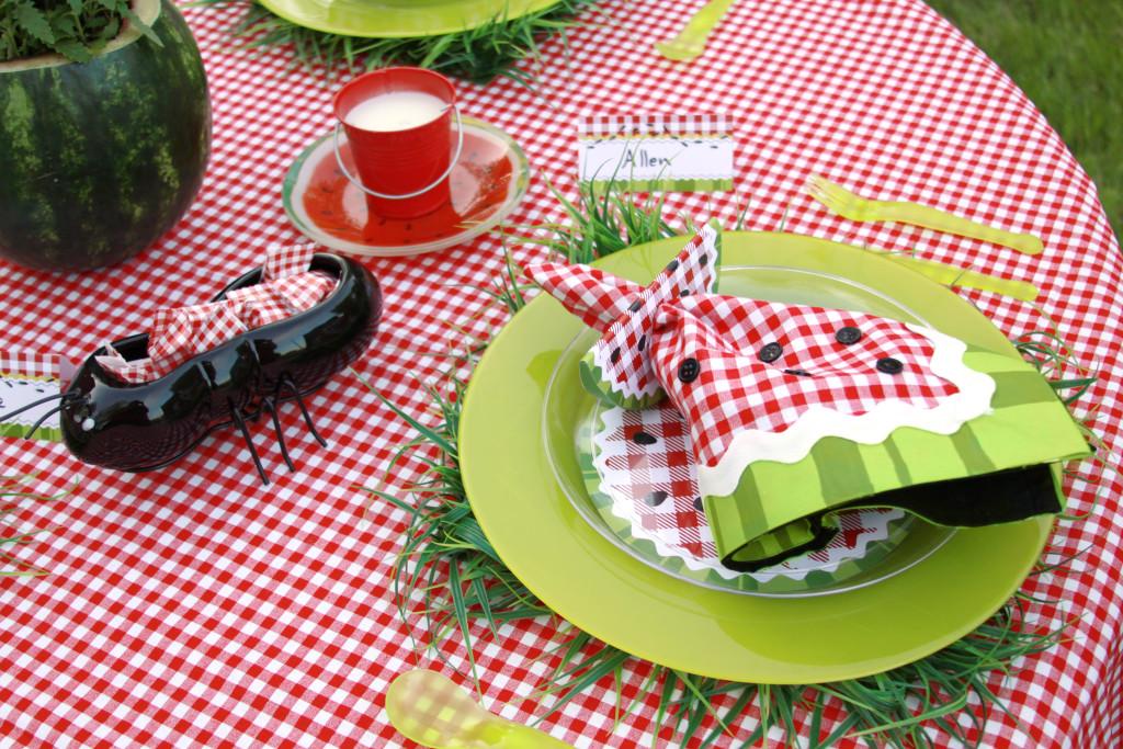 festa-infantil-tema-picnic 41