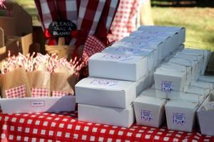 festa-infantil-tema-picnic 48