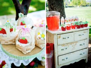 festa-infantil-tema-picnic 52