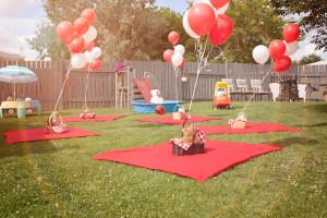 festa-infantil-tema-picnic 56