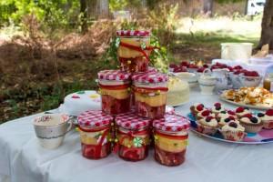 festa-infantil-tema-picnic 57