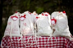 festa-infantil-tema-picnic 6