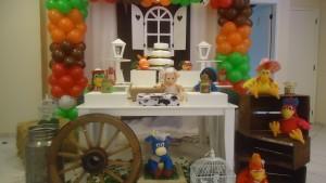 festa-infantil-tema-cocoricó12